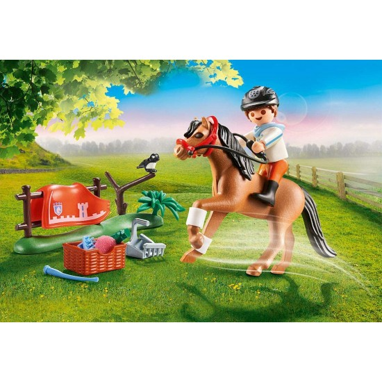 Playmobil Country Collector's pony Connemara (70516)
