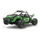 Derago XP1 4WD 2,4G green(410012)