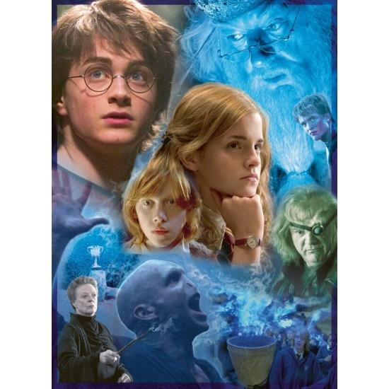 Ravensburger Puzzle Harry Potter in Hogwarts (14821)